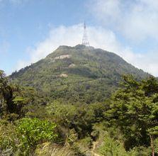 View of Mount Te Aroha from Te Aroha Domain