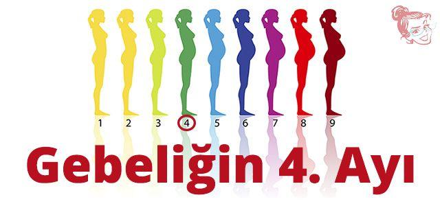 Gebeliğin 4. Ayı   #anne #annelik #gebelik #hamilelik #bebek #çocuk #doğum #annetavsiyesi #4.ay