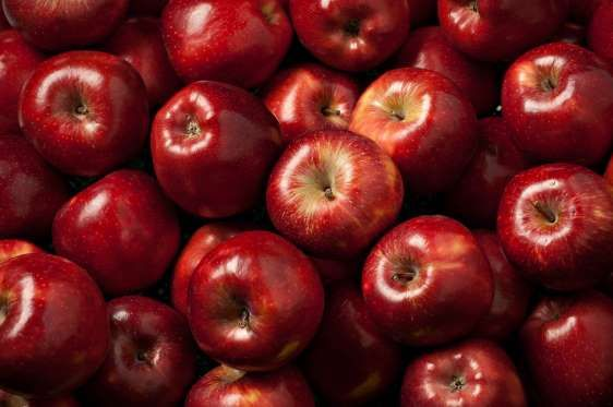 Apples can be stored at room temperature, but if you want greater longevity, store your apples in the refrigerator, preferably in the crisper drawer. Leaving an apple out at room temperature will cause it to ripen after a few days, but popping it into the fridge will keep it crisp for weeks.