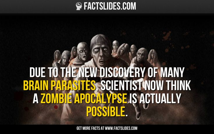 scientific facts of zombies Zombie facts know your enemy what is a zombie zombies at night photo  courtesy of flickr zom-bie: n also zom-bies pl 1 an animated corpse that  feeds.