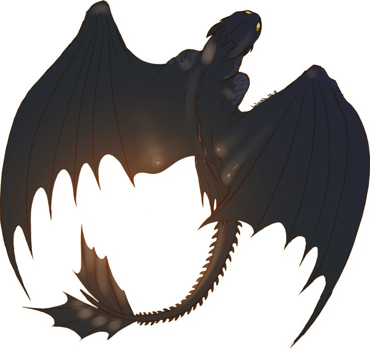 Looveee toothless I want a dragon of my own TT_TT < I also want a dragon of my own. I think we all do. Dragons are awesome! :)