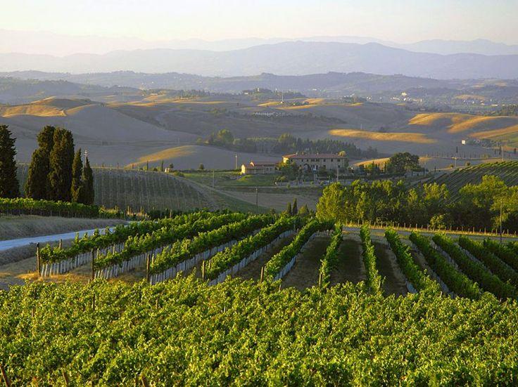 VILLA PILLO  Tuscany, Italy