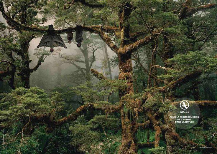 Campagne Aigle « Pour la réintroduction de l'homme dans la nature »
