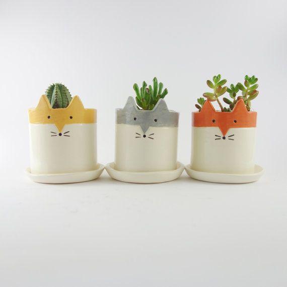 Pot en céramique avec soucoupe, Fox succulentes ou cactus Pot, ressort Fox