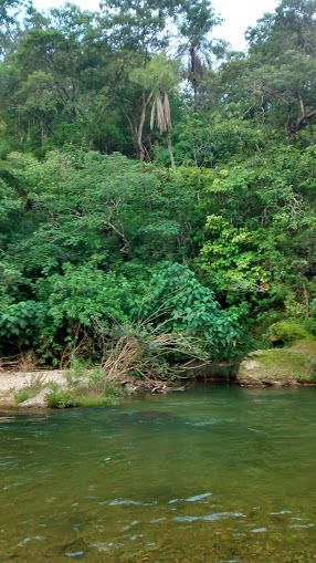 rio - goiás - brasil