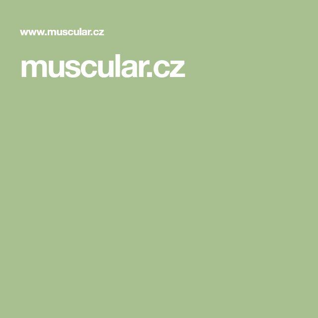 muscular.cz