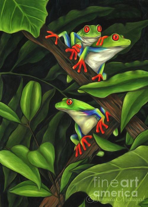 Tammara Markegard | COLORED PENCIL | Leap Frog