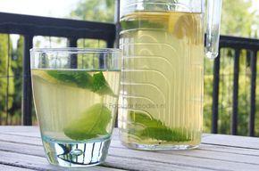 Verfrissende suikervrije ijsthee - maak 1liter groene thee, voeg het sap van een halve citroen toe en wat muntblaadjes. Laat wat afkoelen en dan in de ijskast. Serveer evt met ijsblokjes.