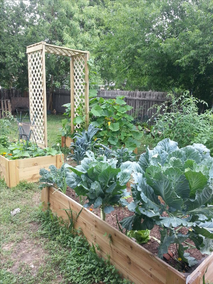 Botanical Garden Timing Garden layout, Raised garden