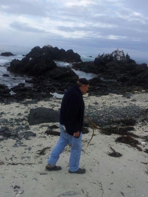 Paparazzeo en la playa las conchitas punta de choros chile www.lascubasdecydonia.cl