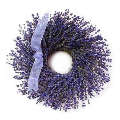 Norfolk Lavender 16 in. Dried Floral Wreath