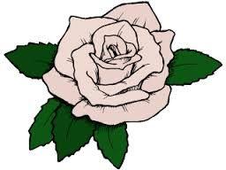 Afbeeldingsresultaat voor bloemen tekening