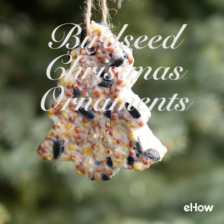 Super cute way to feed the birds and decorate your yard at the same time!