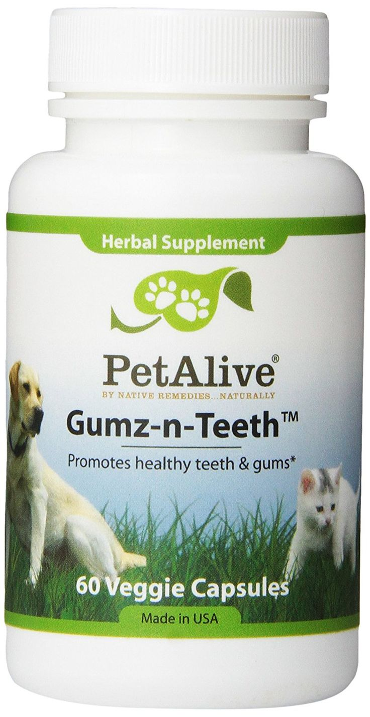 PetAlive Gumz-n-Teeth for Healthy Pet Gums and Teeth (60 Caps) *** Read more  at the image link.