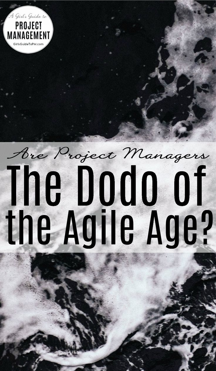 Are Project Managers The Dodo of The