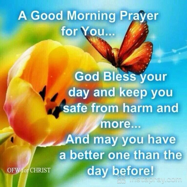 Good Morning Family Prayer : Images about good morning night on pinterest