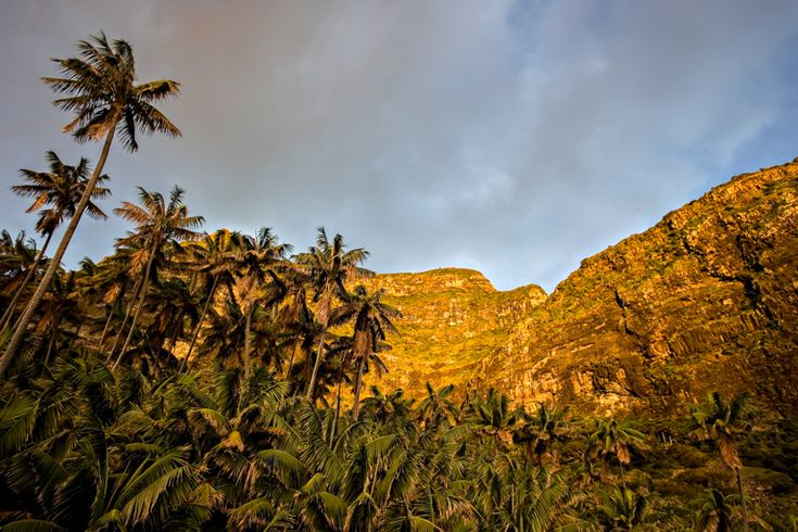 Evening light at Little Island | Lord Howe Island
