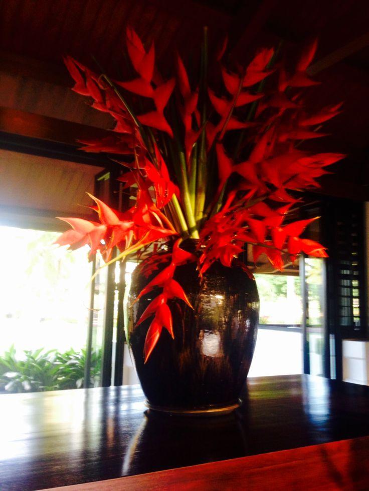 Wildwood Heliconia tropical flowers make a big impact in black vase. #flowers #byronbay #tropical