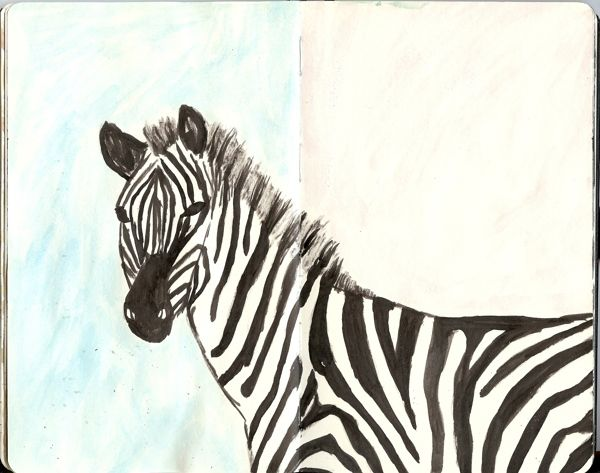 From my Moleskine - Serious looking zebra in ink and watercolours   Tali Kord