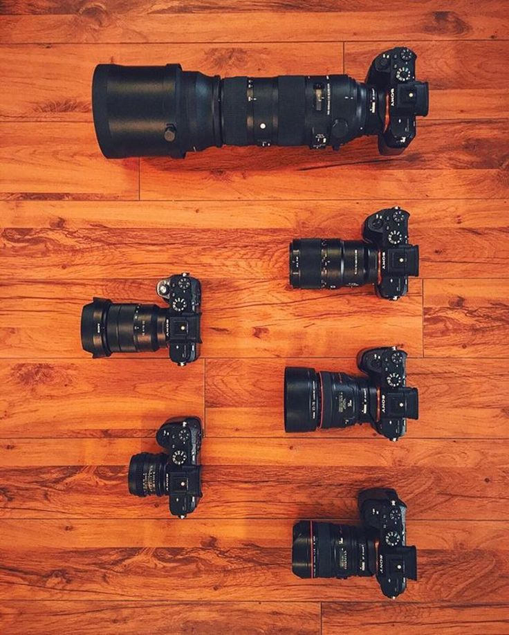 When you need one camera for every lens beautiful collection Photo by @johnbarr00 Tag someone who'll appreciate  #camera #gear #sony #cameras #sonycamera #sonya7rii #sonya7 #sonya6000 #sonyalpha #photographyislife #photographerlife #photoshooting