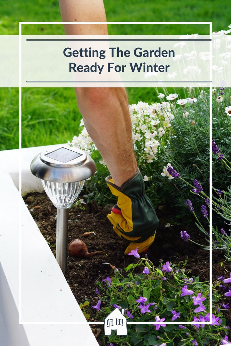 367 best gardening images on pinterest gardening tips gardening