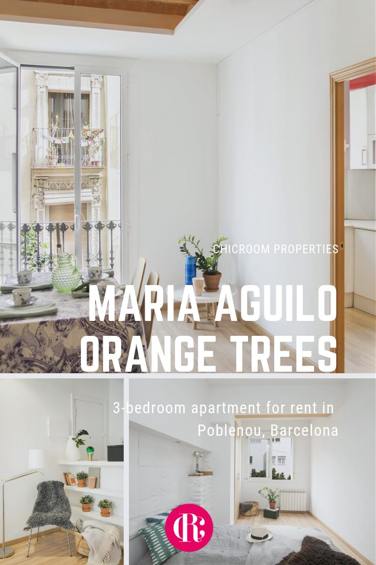 3 Bedroom Apartment For Rent In Poblenou Barcelona Maria Aguilo Orange Trees Apartments For Rent Furnished Apartments For Rent Renting A House