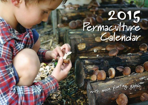 The 2015 Permaculture Calendar is here and I've put together some wholesale offers that are available for delivery within Australia that take advantage of cheaper postal pack rates.