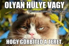 grumpy cat magyarul felirattal