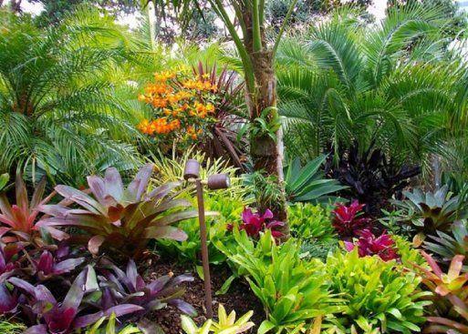 la recopilacin de jardines tropicales ms
