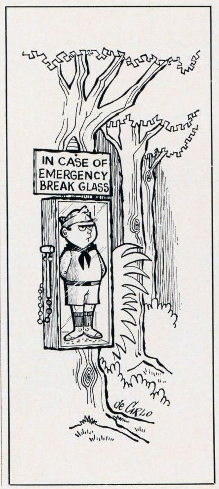 1960's Cub Scout Cartoons that still ring true