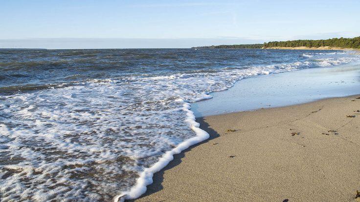 Laulasmaassa, noin 35 kilometrin ja 45-60 minuutin ajomatkan päässä Tallinnan keskustasta, on ranta, joka sopii kauneutta ja rauhaa rakastavalle. Jos auringon ottamisen ja uimisen lisäksi kaipaa muuta tekemistä, Laulasmaa Spa:n rannalla toimii myös esimerkiksi surffikoulu, josta aktiviteetteja kaipaava inspiroituu. Myös suppaus on mahdollista. #tallinna #eckeröline #laulasmaa
