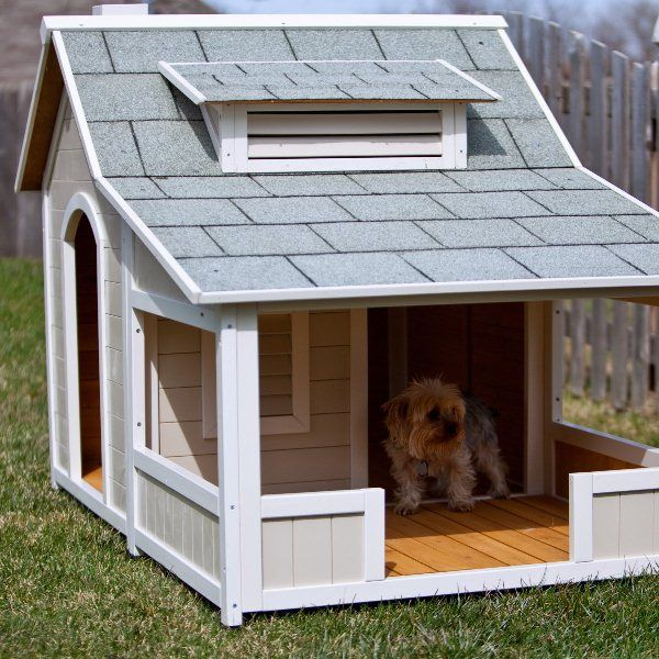 409 best fun dog houses images on pinterest | fun dog, animals and