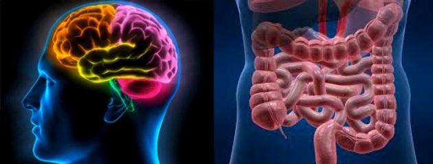 Questi piccoli esserini chiamati anche vermi sono spesso la causa di diverse patologie,che vanno da semplici eruzioni cutanee fino al diabete e al tumore. Diversi lettori ci hanno contattato chiedendoci informazioni su questo argomentoe così abbiamo chiesto un parere al nostro Dott. Baldari per capire