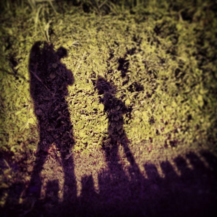 Shadow walk, The Breakers Hotel, Umhlanga, Kwazulu Natal.