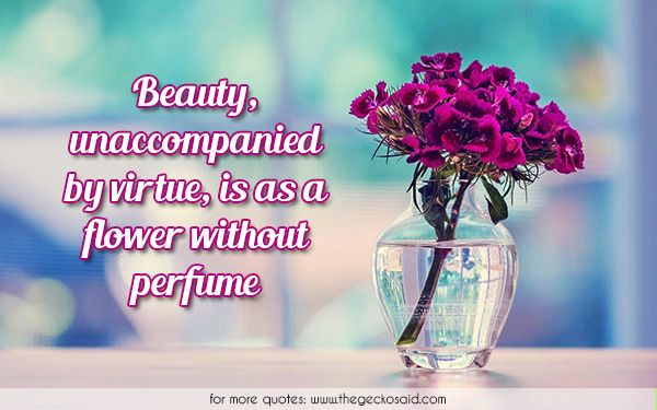 Beauty, unaccompanied by virtue, is as a flower without perfume.  #beauty #flower #perfume #quotes #unaccompanied #virtue
