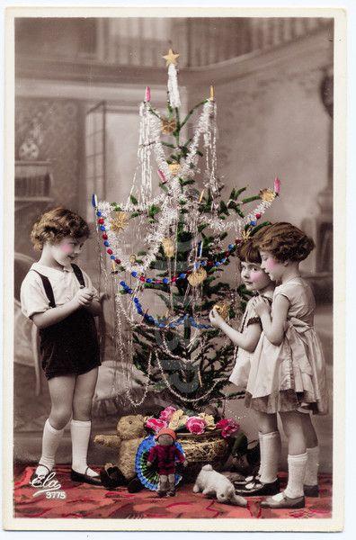 Ace Christmas Trees