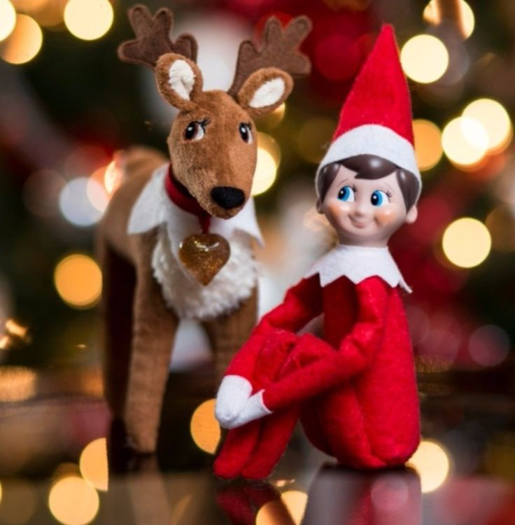 1 day to go until the elves are here yay #movinghouse #happy http://wu.to/LeIAIs #movingtips #elfontheshelf #merrychristmas
