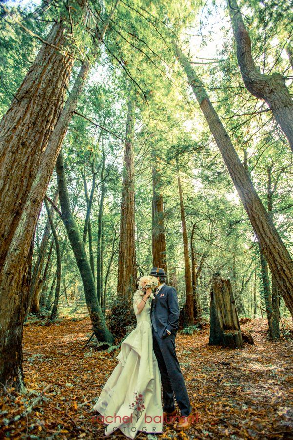 25 best images about venues on pinterest santa cruz for Forest wedding dress vintage