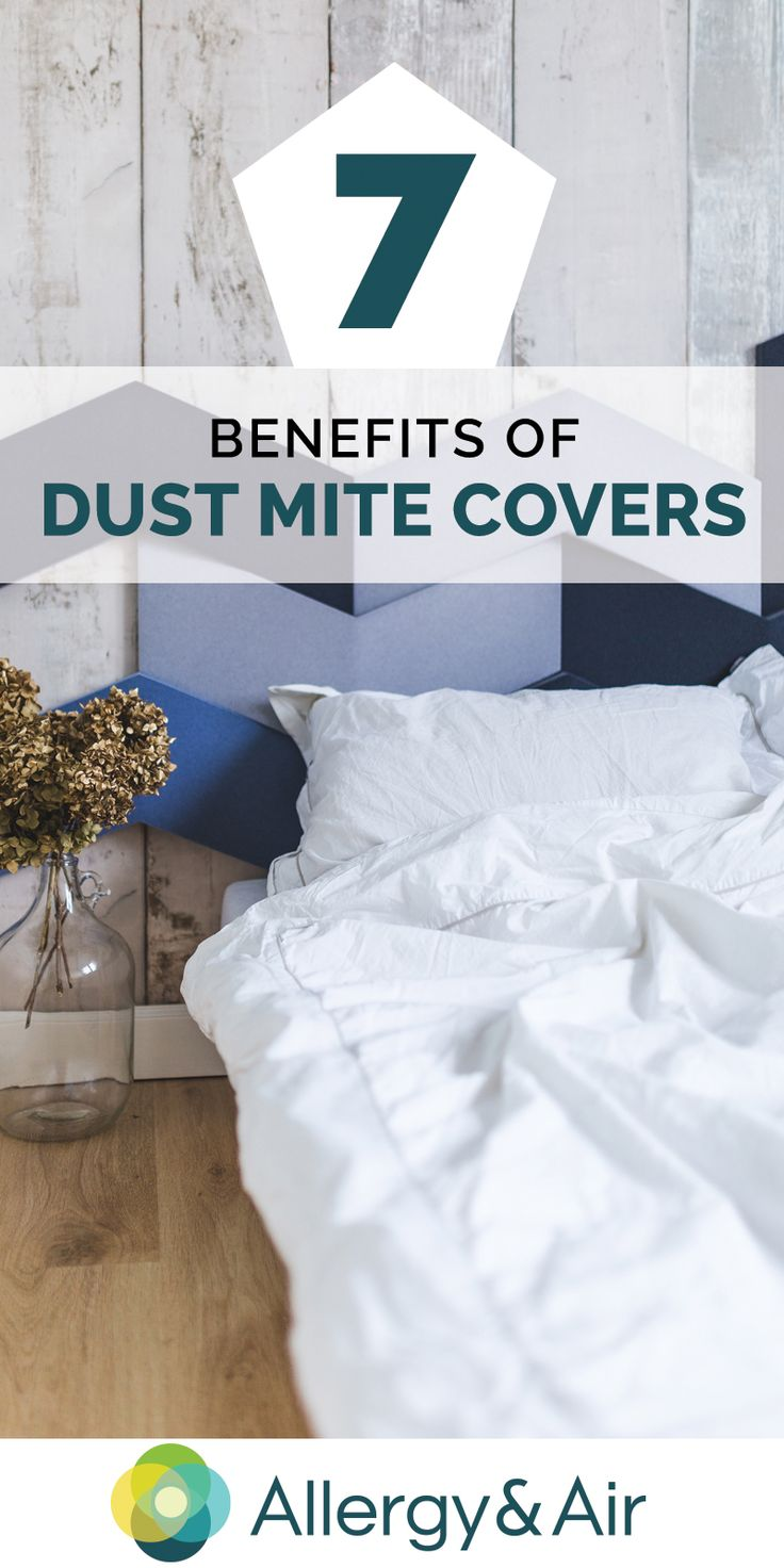 15 best sleep better images on pinterest sleep better allergies