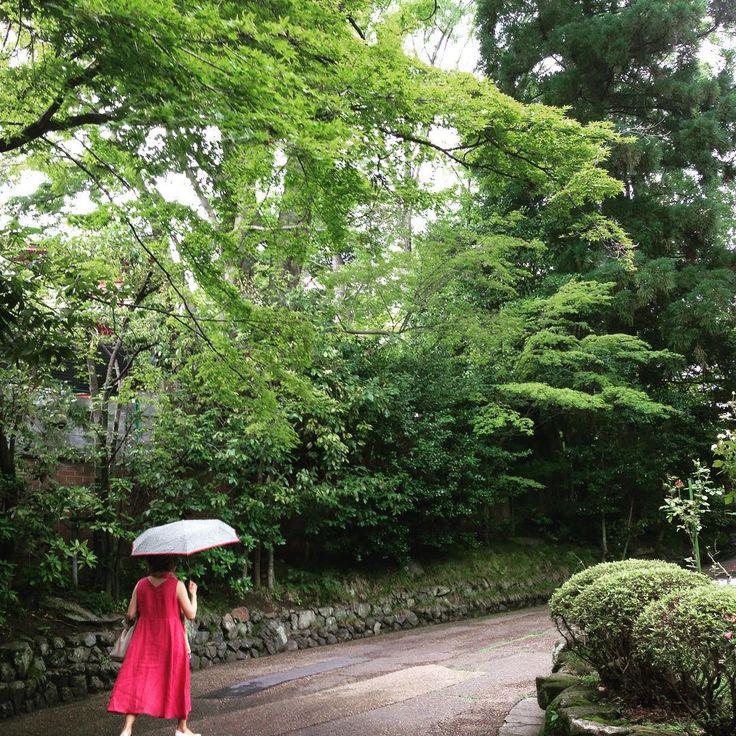 . hot and humid afternoon at Asahi Beer Oyamazaki Villa Museum of Art. lady in red is my mom. . 汗吹く午後でした。アサヒビール大山崎山荘美術館にて。 赤い人は母。ジムで鍛えてはるので歩くん速いねん . #summer #été #sommer #verano #夏 #garden #庭園 #green #vert #hijau #grün #verde #緑 #みどり #グリーン #大山崎山荘美術館 #大山崎 #京都 #oyamasaki #kyoto #お出かけ