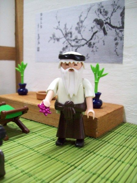 Kawasaky Motoninja (1) - PLAYMOBIL Collectors Club
