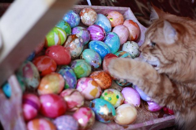 how to preserve decorated Easter eggs for years