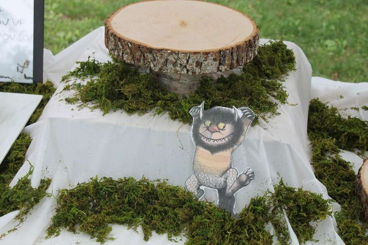 Where the Wild Things Are Birthday Party Ideas | Photo 6 of 25 | Catch My Party