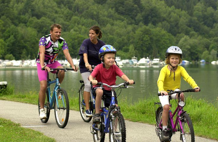 Citaten Over Fietsen : Best fietsquotes images on pinterest fietsen grappige