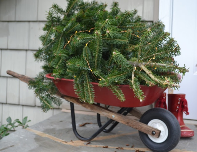 20 Best Images About Wheelbarrows On Pinterest