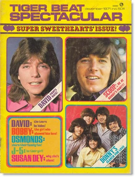 """tiger beat magazine. I """"LOVED"""" Donny Osmond and swore I was going to marry him, funny!!"""