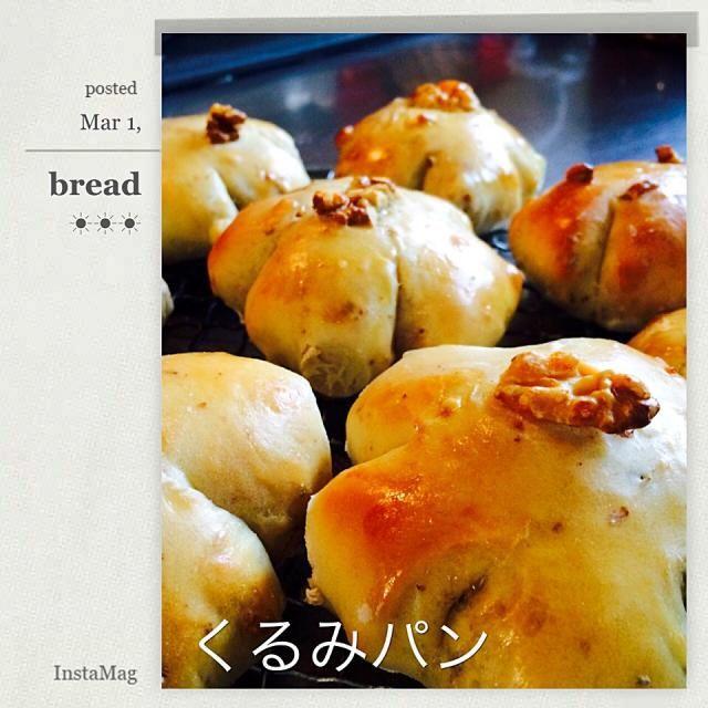 リトルマーメイド風くるみパン! 甘すぎない、くるみの風味があって素朴な味✨ 大成功 - 110件のもぐもぐ - くるみパン by (⑅︎maˊᵕˋk i⑅︎ )