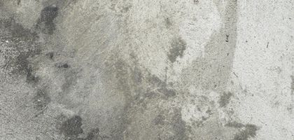 How To Remove Cat Urine From Concrete Cats Stains And