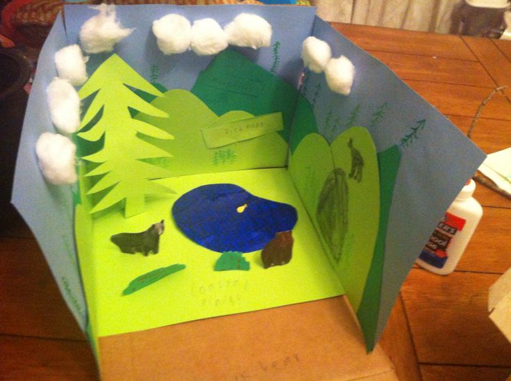Black bear habitat diorama
