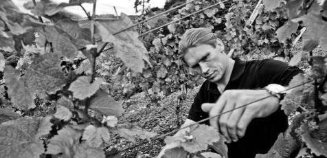 Roman Niewodniczanski, Falstaff Winemaker of the Year 2012.